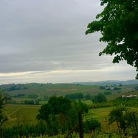 Photo taken at Vigneto Ghiazza by Cascina G. on 4/28/2015
