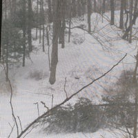 Photo taken at Nelsonville Foot Path by Marshall M. on 2/15/2014