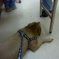 Photo taken at Banfield Pet Hospital by Werner F. on 2/27/2012
