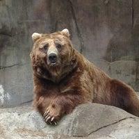 Photo taken at John Ball Zoo by Tabitha L. on 5/26/2012