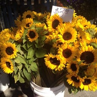 Photo taken at Concord Farmers' Market by Ariel S. on 7/2/2013