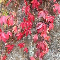 Das Foto wurde bei Landschaftspark Duisburg-Nord von Ksenia I. am 10/14/2012 aufgenommen
