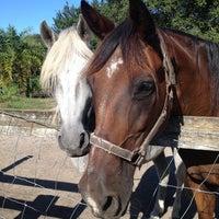 Photo taken at Lori's Barn by Melinda Z. on 8/13/2013