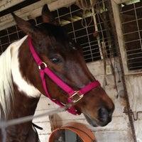 Photo taken at Lori's Barn by Melinda Z. on 12/9/2012