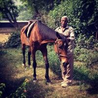Photo taken at Delhi Riding Club by Hiroshi O. on 5/5/2013