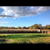 Photo taken at Queens County Farm Museum by Momo W. on 10/21/2012