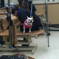Photo taken at PetSmart by Melissa on 2/16/2013