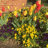 Photo taken at Wake Forest School of Law by Lisa S. on 4/6/2016