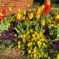 Photo taken at Wake Forest School of Law by Lisa S. on 4/7/2016