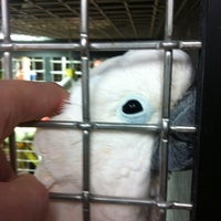 Photo taken at Super Pets by Jane A. on 10/14/2012