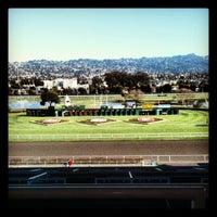 Photo taken at Golden Gate Fields by Gabi T. on 1/12/2013