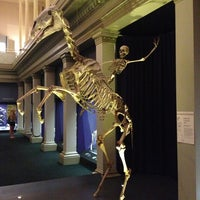 Photo taken at Australian Museum by Анастасия В. on 1/11/2013