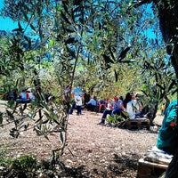 Photo taken at Planeta - Cantina dell'Ulmo by Serena T. on 5/12/2013