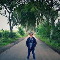 Photo taken at The Dark Hedges by John P. on 9/20/2016