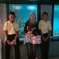 Photo taken at พิพิธภัณฑ์สัตว์น้ำราชมงคลตรัง by April A. on 1/21/2016