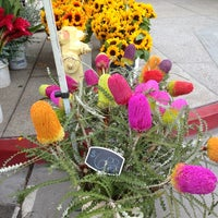 Photo taken at Little Italy Mercato by Clarice M. on 6/8/2013