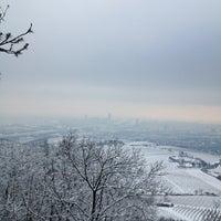 Photo taken at Kahlenberg by Ekaterina P. on 1/15/2013