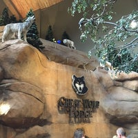 Photo taken at Great Wolf Lodge by Dave W. on 6/16/2015