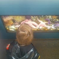 Photo taken at Shaw Ocean Discovery Center by Robert T. on 3/1/2014