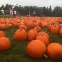 Photo taken at F&W Schmitts Farm by Kathy on 10/6/2012