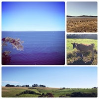 Photo taken at Long Bay Regional Park by Ashley T. on 1/5/2013