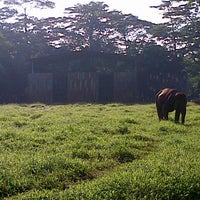 Photo taken at Kebun Binatang Ragunan by Diani A. on 12/16/2012