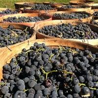 Photo taken at Robibero Winery by Misha W. on 9/28/2013