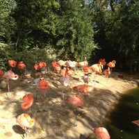 Photo taken at Fort Worth Zoo by Victor A. on 11/23/2012