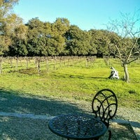 Photo taken at Madonna Estate Winery by Catarina L. on 12/26/2015