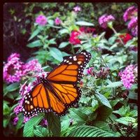 Photo taken at Texas Discovery Gardens by Leslie B. on 10/13/2012