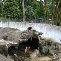 Photo taken at Mini Zoo Taman Teruntum by Mad H. on 1/15/2014