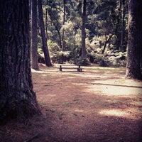 Photo taken at Horto Florestal de Campos do Jordão by Queimando Filme F. on 9/11/2012