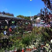Photo taken at Flowercraft Garden Center by Patrick Q. on 9/8/2012