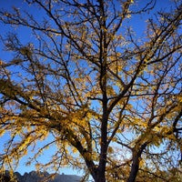 Photo taken at Bonnie Springs Ranch by Swake L. on 11/1/2013