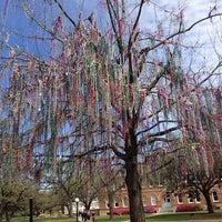 Photo taken at Tulane University by James A. on 3/1/2013