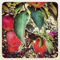 Photo taken at Apple Junction by Mischa (Michele) K. on 9/23/2012