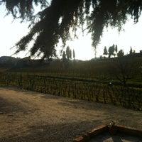 Photo taken at Pietro Beconcini Agricola by Eva B. on 2/17/2013