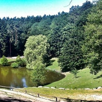 Photo taken at Wildpark Schwarze Berge by Daniel on 7/21/2013