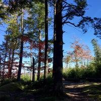 Photo taken at Hemlock Ravine by Oliver G. on 10/21/2015