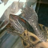 Photo taken at Petco by Sarah B. on 11/4/2012