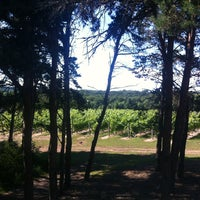 Photo taken at Silver Leaf Vineyard and Winery by Lesley S. on 8/2/2013