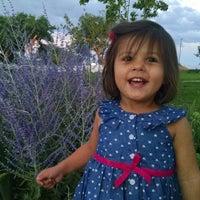 Photo taken at Ashley Pond by J W. on 7/17/2015