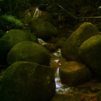 Photo taken at Waterfall, Forest Research Institute of Malaysia by Kok-kong N. on 6/2/2013
