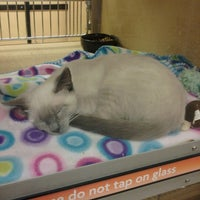 Photo taken at PetSmart by Mandy O. on 11/15/2012