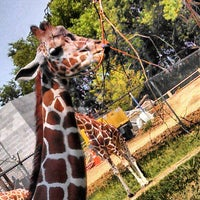 Photo taken at Blank Park Zoo by Shannon F. on 8/11/2013