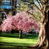 Photo taken at Boston Public Garden by Alice P. on 5/3/2013