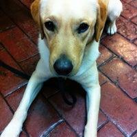 Photo taken at Lakeline Animal Clinic by Austin P. on 2/7/2013