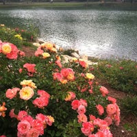 Photo taken at Lake Ella by Tabitha D. on 4/15/2012