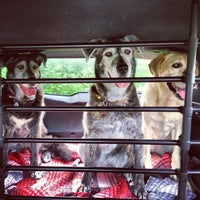 Photo taken at Broad Ripple Park Canine Companion Area by Tristan S. on 5/20/2013