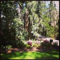 Photo taken at Magnolia Plantation & Gardens by Jerome N. on 3/29/2013